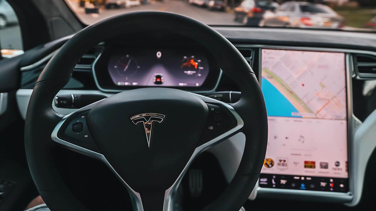 teslas-autonomes-fahren-verhindert-wild-unfall