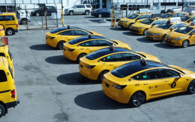 Tesla Model 3 wird stetig beliebter als Taxi