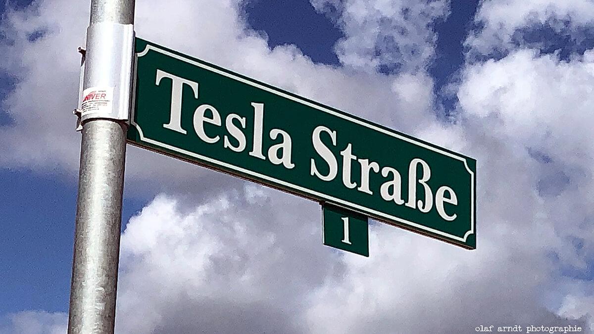 Tesla-Werk in Grünheide: Aufforstungen sind im Gange